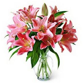 3 dal kazablanka görsel vazosu  Bursa çiçekçi telefonları