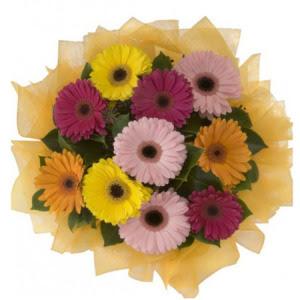 Bursa hediye sevgilime hediye çiçek  11 adet karışık gerbera çiçeği buketi