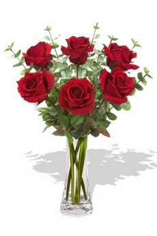 Bursa İnternetten çiçek siparişi  6 kırmızı gül vazosu