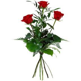 Bursa çiçekçi mağazası  3 adet kırmızı gülden buket
