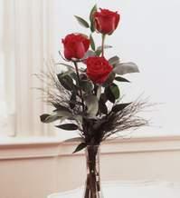 Bursa çiçek yolla  Vazoda 3 adet güzel gül