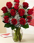 Sevgilime hediye 9 adet 1.ci kalite gül  Bursa internetten çiçek satışı