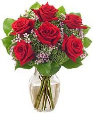 Kız arkadaşıma hediye 6 kırmızı gül  Bursa çiçekçi telefonları