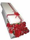 Bursa kaliteli taze ve ucuz çiçekler  11 adet 1.kalite magnum güller