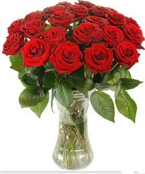 Bursa online çiçek gönderme sipariş  Vazoda 15 adet kırmızı gül tanzimi
