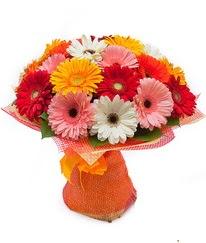 Renkli gerbera buketi  Bursa internetten çiçek satışı