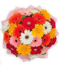 15 adet renkli gerbera buketi  Bursa uluslararası çiçek gönderme