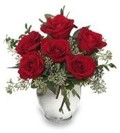 Vazo içerisinde 5 adet kırmızı gül  Bursa İnternetten çiçek siparişi