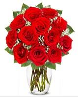12 adet vazoda kıpkırmızı gül  Bursa ucuz çiçek gönder
