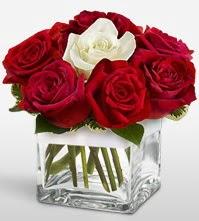 Tek aşkımsın çiçeği 8 kırmızı 1 beyaz gül  Bursa çiçekçi mağazası