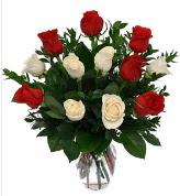 Vazo içerisinde 6 kırmızı 6 beyaz gül  Bursa çiçek yolla , çiçek gönder , çiçekçi