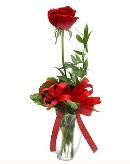 vazo içerisinde 1 adet kırmızı gül  Bursa kaliteli taze ve ucuz çiçekler