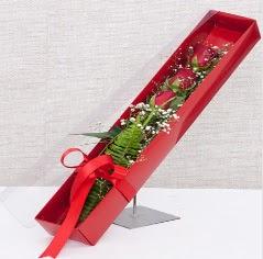 Kutu içerisinde 3 adet kırmızı gül  Bursa çiçek , çiçekçi , çiçekçilik