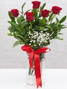 cam vazo içerisinde 5 adet kırmızı gül  Bursa hediye çiçek yolla
