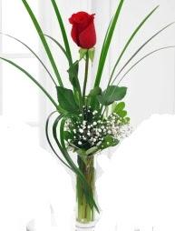 Cam içerisinde 1 kırmızı gül  Bursa çiçek online çiçek siparişi