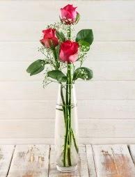 Cam içerisinde 3 kırmızı gül  Bursa güvenli kaliteli hızlı çiçek