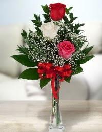 Camda 2 kırmızı 1 beyaz gül  Bursa online çiçekçi , çiçek siparişi