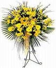 Bursa uluslararası çiçek gönderme  Sari kazablanka Ferforje
