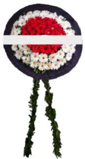mozele çiçeği  Bursa çiçekçiler