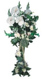Bursa online çiçek gönderme sipariş  antoryumlarin büyüsü özel