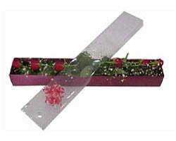 Bursa internetten çiçek satışı   6 adet kirmizi gül kutu içinde