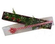 Bursa çiçek yolla , çiçek gönder , çiçekçi   3 adet gül.kutu yaldizlidir.