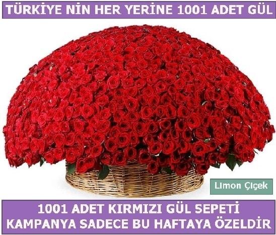 1001 Adet kırmızı gül Bu haftaya özel  Bursa hediye sevgilime hediye çiçek
