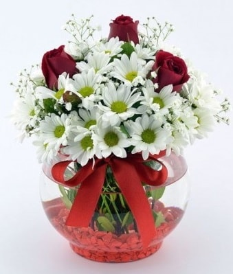 Fanusta 3 Gül ve Papatya  Bursa çiçek yolla