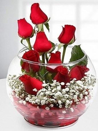 Kırmızı Mutluluk fanusta 9 kırmızı gül  Bursa çiçek gönderme sitemiz güvenlidir