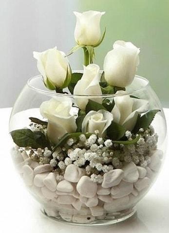 Beyaz Mutluluk 9 beyaz gül fanusta  Bursa çiçek gönderme sitemiz güvenlidir