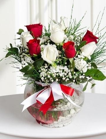 Aşk Küresi  5 beyaz 5 kırmızı gül fanusta  Bursa çiçek yolla