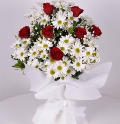 7 adet kırmızı gül ve papatyalar krizantem  Bursa çiçek yolla