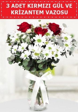 3 kırmızı gül ve camda krizantem çiçekleri  Bursa çiçek mağazası , çiçekçi adresleri