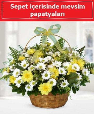 Sepet içerisinde mevsim papatyaları  Bursa online çiçekçi , çiçek siparişi