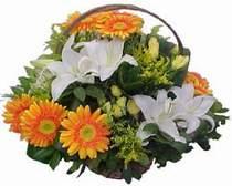 Bursa 14 şubat sevgililer günü çiçek  sepet modeli Gerbera kazablanka sepet