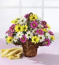 Bursa çiçek gönderme  Mevsim çiçekleri sepeti